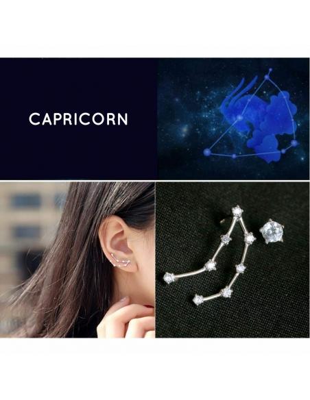 Zodiac Stud Earring Set -  Capricorn