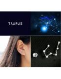 Zodiac Stud Earri...