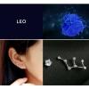 Zodiac Stud Earring Set - Leo