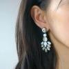 White Crystal Drop Earrings
